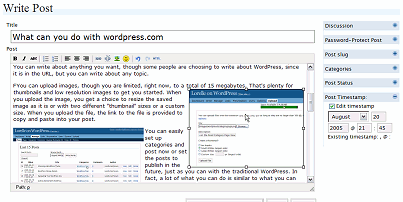 WordPress 1.6 WYSIWYG write post dynamic editor