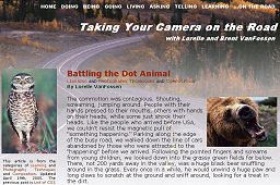 Taking Your Camera on the Road - Website Design and Layout in 2005