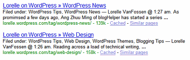 Example of Lorelle on WordPress category and tag posts found on Google