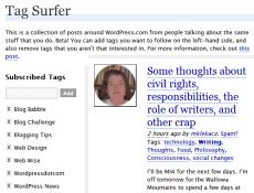 Example of Tag Surfer feature in WordPress.com blogs