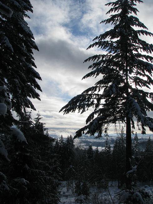 snowintualitinvalleyfromwindow