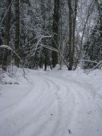 snowondrivenearcurve