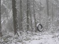 A tire swing hangs in forest covered with snow. Photography by Brent VanFossen.