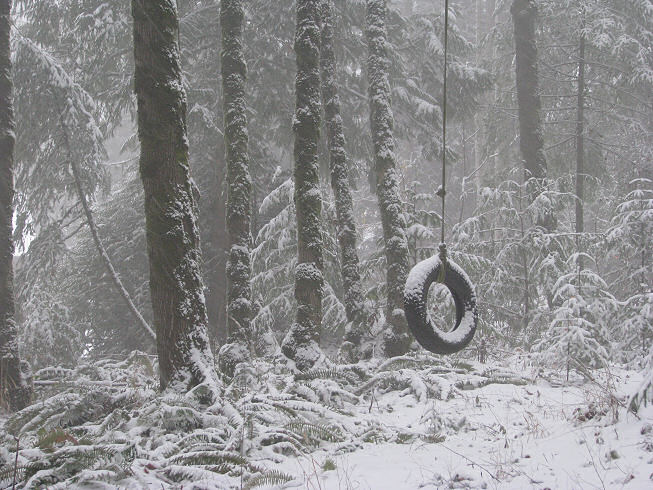 tireswinginsnow