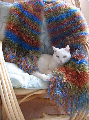 Knitted scarf by Lorelle VanFossen and mother's cat, Brother, takes it over.