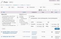 bulk-edit-bulkedit-view-of-posts-fixing-tags