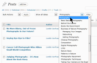 WordPress Category Filter posts option