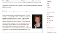 Author bio example from Camera on the Road featuring Lorelle VanFossen