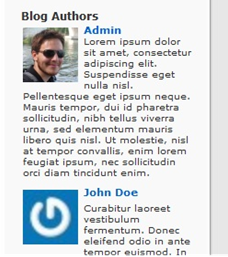 Example of author list in WordPress Widget with bios