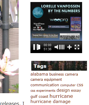 text widgets video2