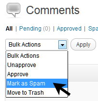 How to bulk edit multiple comments in WordPress