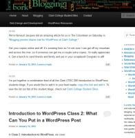 Example of post formats in the Twenty Eleven WordPress Theme