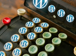 cash register making money with wordpress