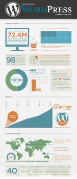 WordPress Stats infograhic by Yoast