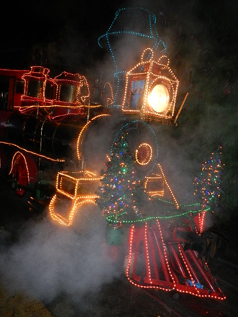 Train decorated with Christmas Lights at Portland Zoo Lights Festival - photography copyright Lorelle VanFossen.