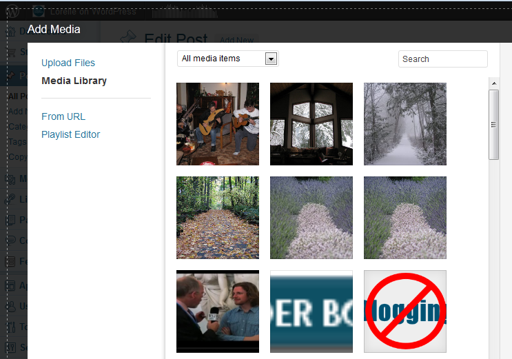 media_uploader_-_media_library_all_images