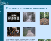 WordPress Gallery on post preview showing multiple images in a post.