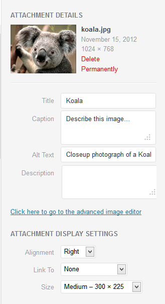 Example of the access link to the advanced image editor in WordPress.