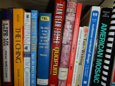The books on Lorelle's shelf - Science Fiction, Tau, Writing, Shirley MacLaine, history, The I Ching, Life 101, self improvement - what do they say about her?