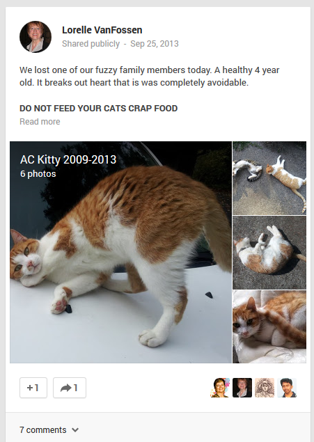 Sharing the death of a pet on Google+.