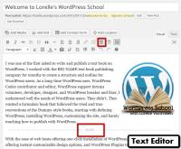 Content – More Excerpt in the Visual Editor – WordPressSchool