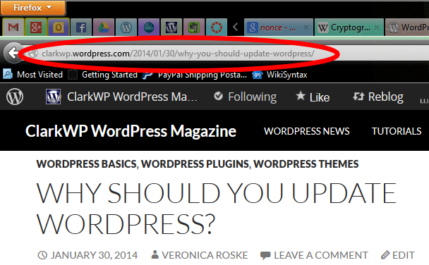 The Published Post Link in the browser address bar in WordPress.