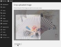 Screenshot of Blavatar - Crop Image - Lorelle WordPress School.