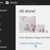 Screenshot of Blavatar Settings - All done.
