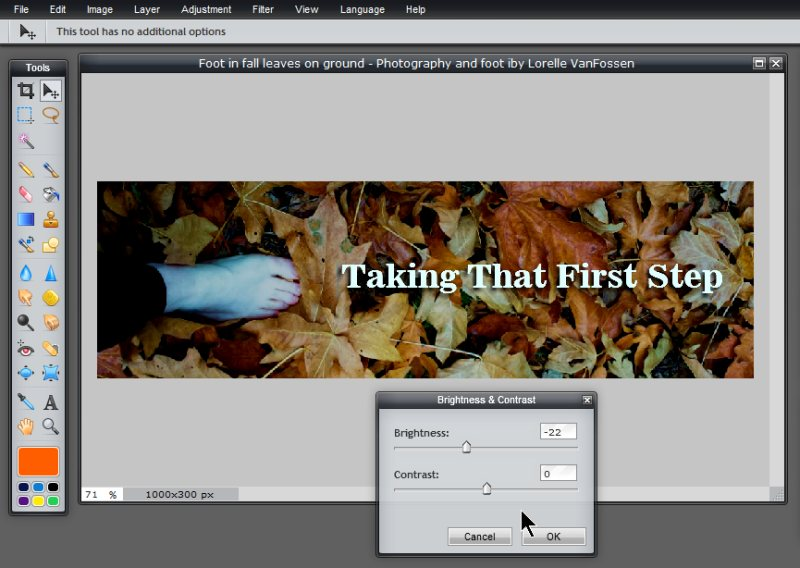 Images - Header Art with Photography - Adjusting photo brightness down in Pixlr - Lorelle WordPress School