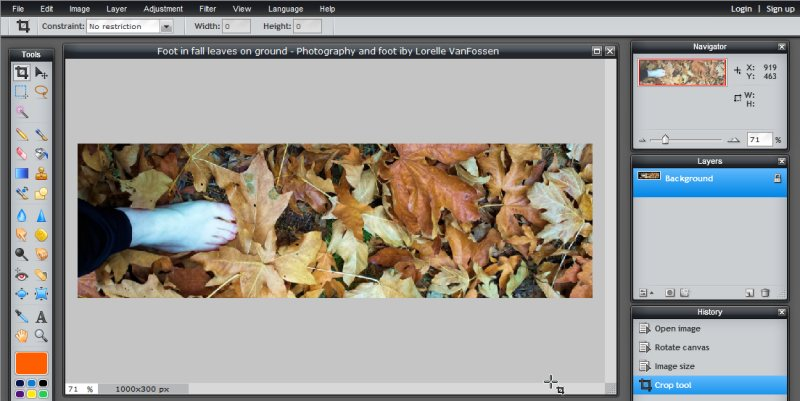 Images - Header Art with Photography - Cropping Image with Crop Tool in Pixlr - Lorelle WordPress School
