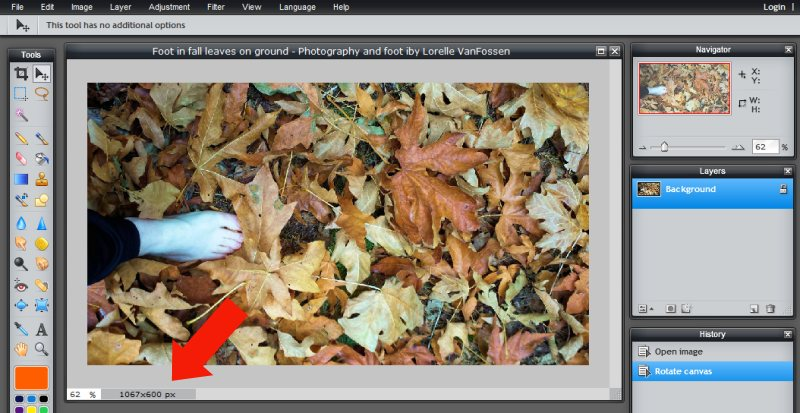 Images - Header Art with Photography - Preparing to Resize Image in Pixlr - Lorelle WordPress School