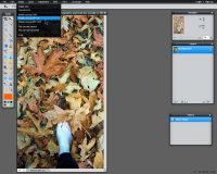 Images - Header Art with Photography - Rotating Photograph to horizontal in Pixlr - Lorelle WordPress School