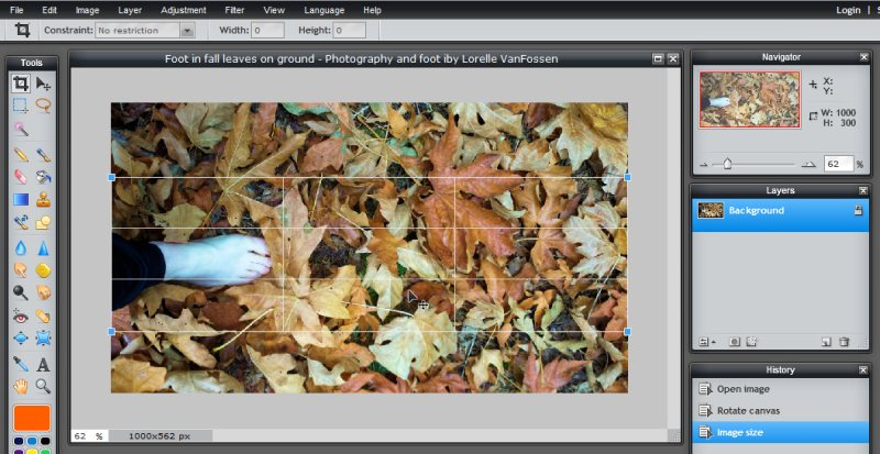 Images - Header Art with Photography - Setting the crop tool in position and width in Pixlr - Lorelle WordPress School