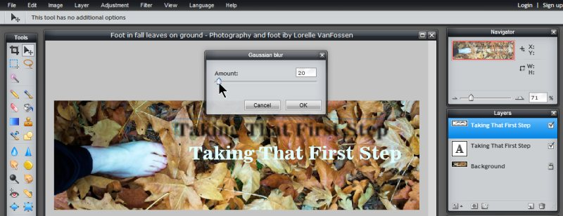 Images - Header Art with Photography - Setting the Gaussian Blur in Pixlr - Lorelle WordPress School