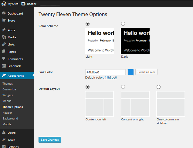 Theme Options for the Twenty Eleven WordPress Theme Scrrn