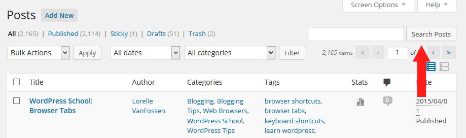 Screenshot of Browser - Searches - WordPress Search Posts Form - Lorelle WordPress School.