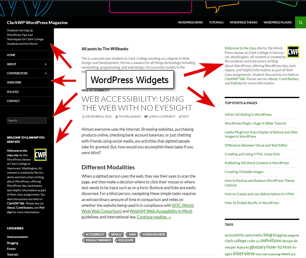 WordPress Details - Examples of WordPress Widgets in sidebar widgetized areas.