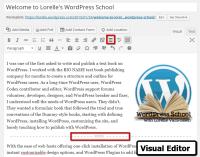 WordPress Excerpts - Visual Editor More button and More excerpt screenshot - Lorelle VanFossen WordPress School.