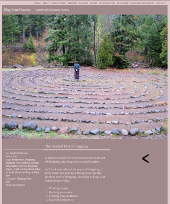 Screenshot of blog post with photo of man standing in middle of labyrinth - Lorelle VanFossen.