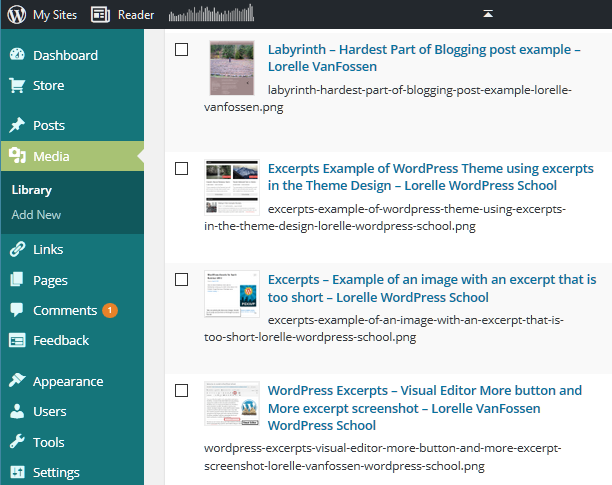 Blogging Tools: Jing Screen Capture and Video